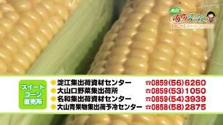 鳥取県大山町でスイートコーンを栽培している坂田裕明さん。今年は過去...