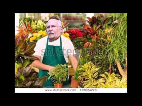Bailbondsh calls The Florist Next Door to Him