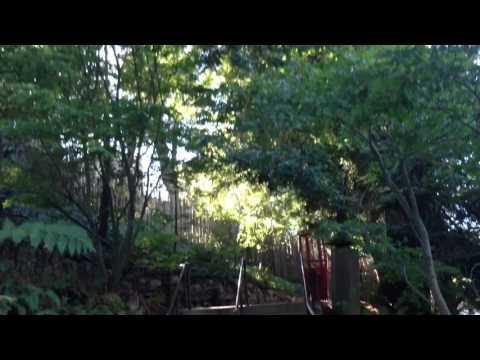 Big Sur Nepenthe Rest 3;  9-28-13