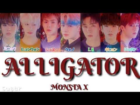 かなるび/日本語字幕/歌詞MONSTA XAlligator パート分け/和訳