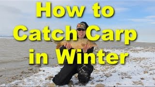 How to catch carp in the winter - cold weather carp fishing and bait