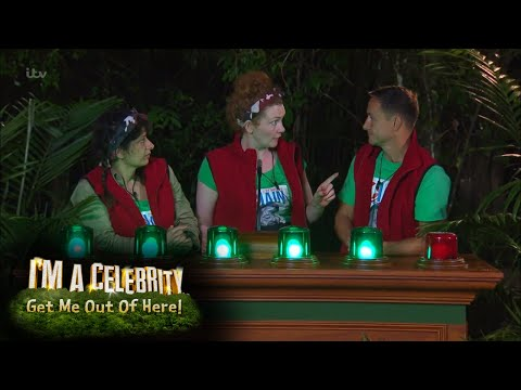 Jungle Prime Minister's Questions for Cake!   I'm A Celebrity… Get Me Out Of Here!