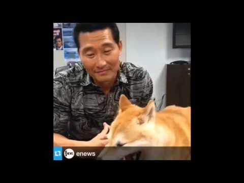 Daniel Dae Kim Videos