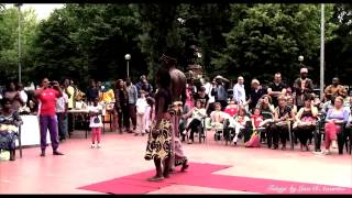 PROMO Black Night Fashion Style immagine dell'evento AFRICA DAY del 08.06.2013