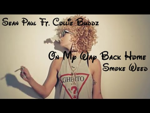 Sean Paul Ft Collie Buddz On My Way Back Home Lyrics