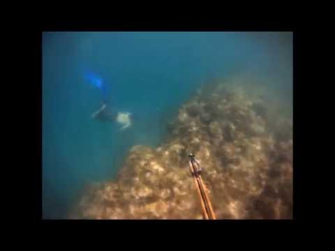 Spearfishing Barbados - Summer 2011