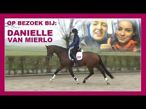 Dressuur bij Danielle van Mierlo   Jouw...