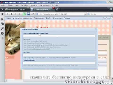 Сайт раскрутки видео на youtube