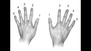 Уроки игры на пианино #4 Аппликатура