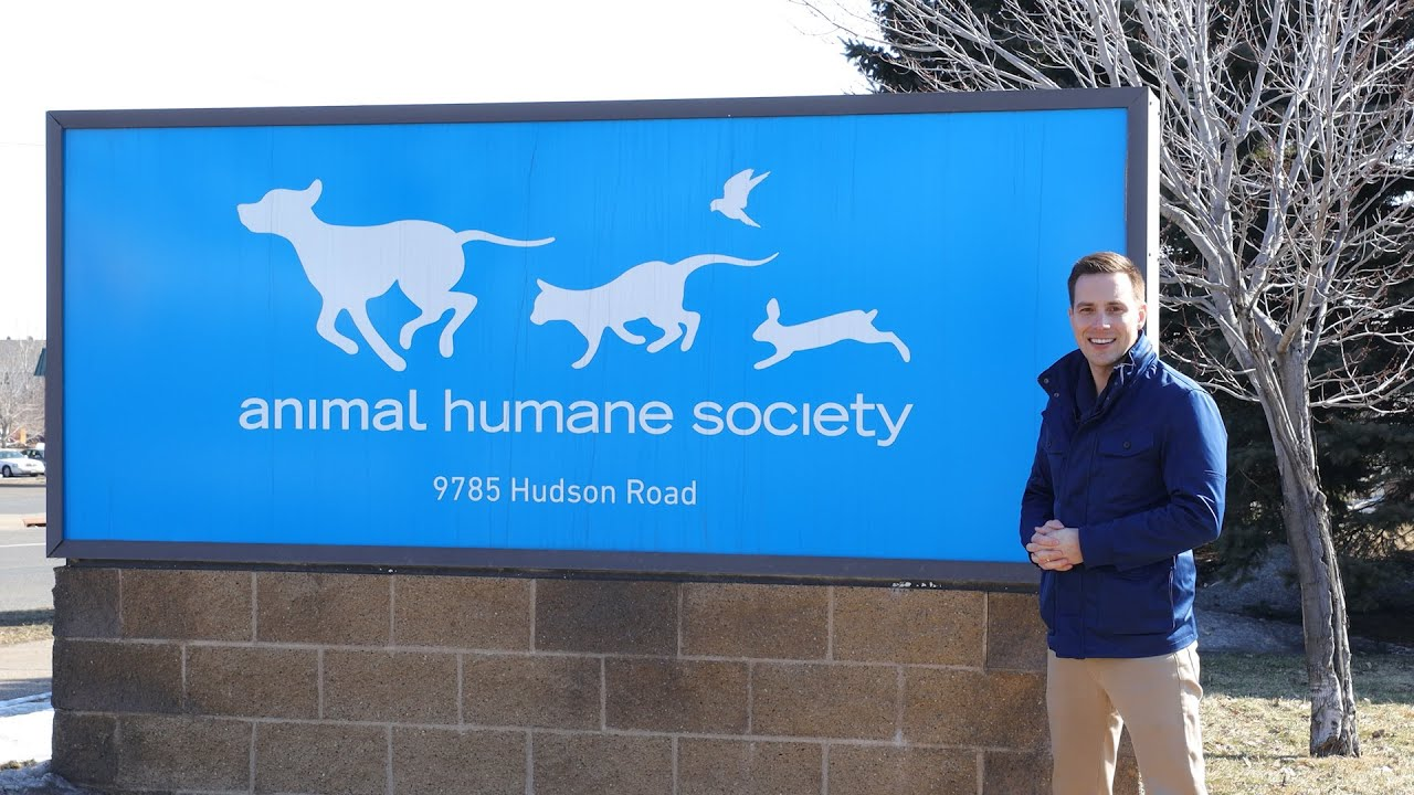 Animal Humane Society Woodbury Mn Youtube