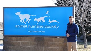 Animal Humane Society - Woodbury, MN