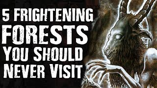 Gambar cover 5 FRIGHTENING FORESTS You Should Never Visit