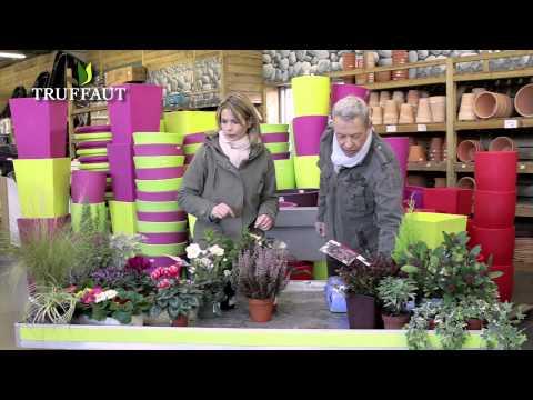 Quelles plantes pour une jardini re d 39 automne et d 39 hiver jardinerie truffaut tv youtube - Truffaut jardiniere ...