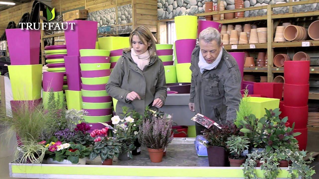 Quelles plantes pour une jardini re d 39 automne et d 39 hiver for Jardiniere d hiver