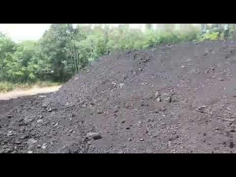 Site Visited Coal Trading _Code DSS V01