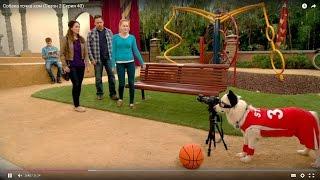 Собака точка ком (Сезон 2 Серия 14)