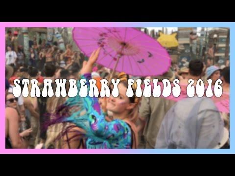 STRAWBERRY FIELDS 2016 🍓
