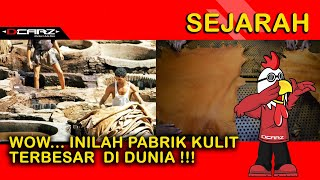 Download Video WOW !! Beginilah Proses Produksi Bahan Jok Kulit Asli MP3 3GP MP4