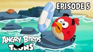 видео Angry Birds