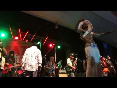 GEORGE CLINTON & Parliament/Funkadelic @ Jazz Fest Vienna (pt.3) 9.7.2016 Flashlight*