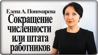 основная процедура проведения сокращения численности или штата работников  Елена А. Пономарева