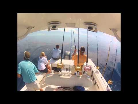 Myrtle Beach Gulf Stream Fishing | North Myrtle Beach Fishing Charters