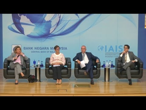 IAIS Annual Conference 2017 -  (Session 3: IAIS Major Projects Update)