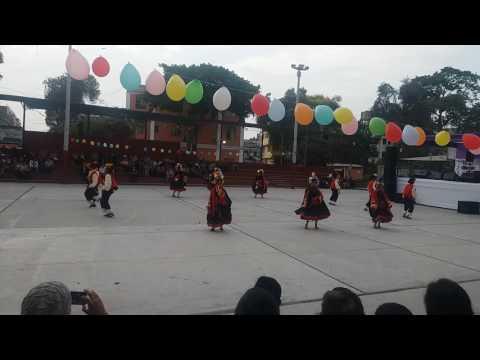Carnaval de Putina - COFSAF IX Festival -San Fernando