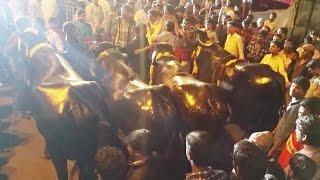 Laddu Yadav Naryanaguda Sadar Part 2 - Chappal Bazar - 2014