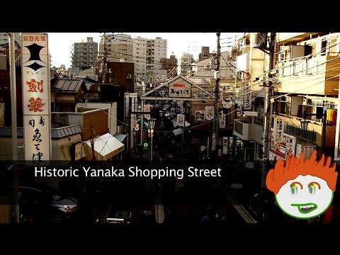 Arriving in Japan? Tour: Nippori Yanaka