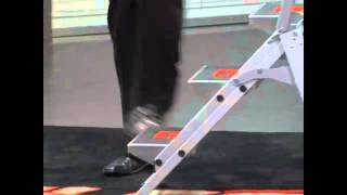 Little Giant Safety Step Ladder | Ladders-online Demo