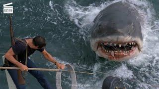 Jaws: Brody kills the shark