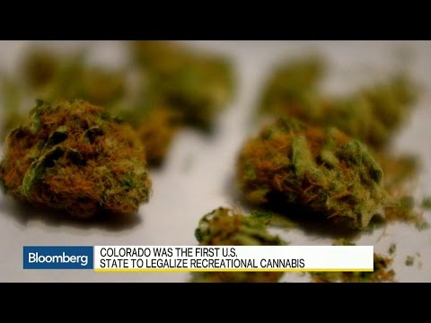 Lily Jamali of Bloomberg TV Canada interviews Colorado Governor John Hickenlooper​ about the lessons learned from marijuana legalization in his state