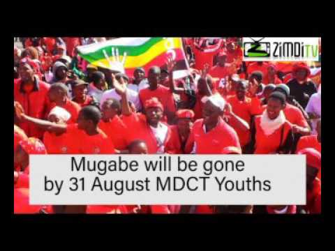 Mugabe will be gone by 31August by any means  says MDCT Youths