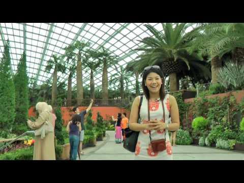 การ์เด้นส์ บาย เดอะ เบย์ สวนพฤกษศาสตร์ยักษ์แห่งสิงคโปร์ (Garden by the bay in Singapore)