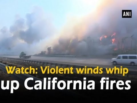 Watch: Violent winds whip up California fires - United States News
