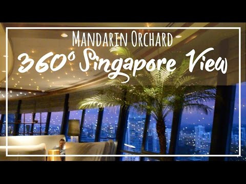 Mandarin Orchard Singapore | Best 360 Executive Club View