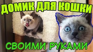 Как я строил домик для кошки своими руками. Кошка в ШОКЕ! / How To Make a Cat House