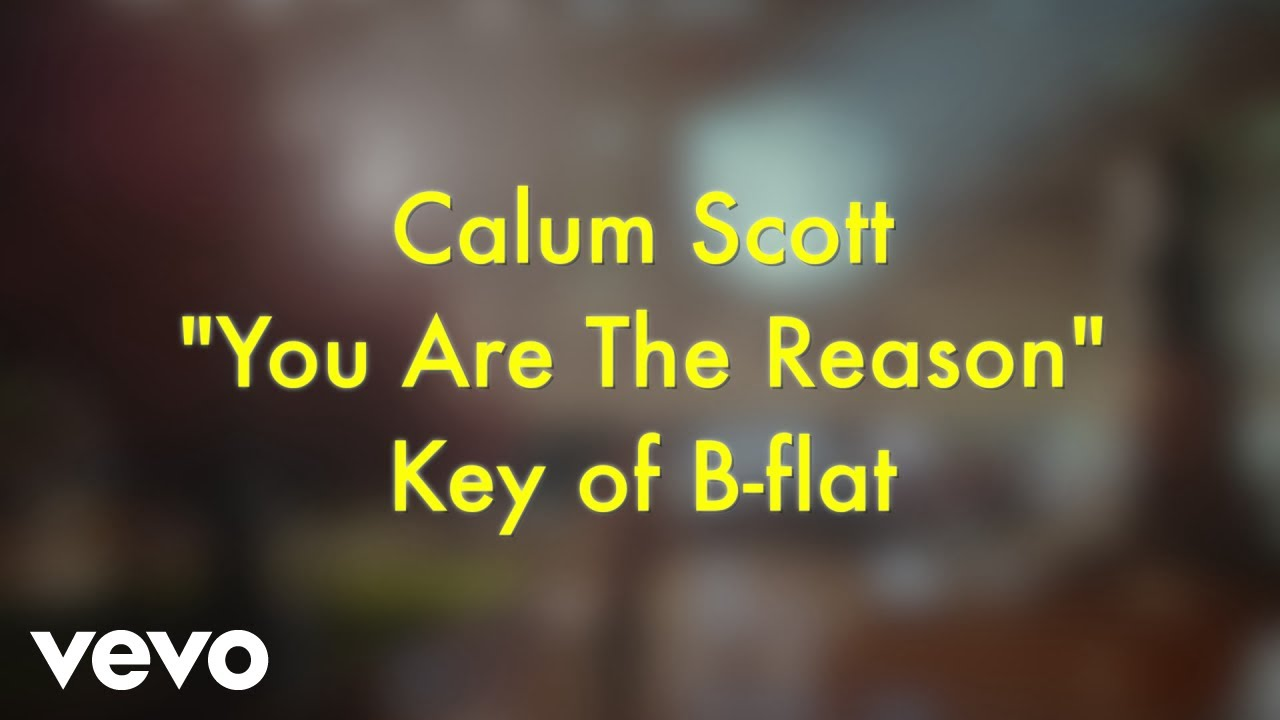 Calum Scott You Are The Reason Karaoke Version