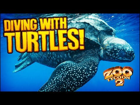 Zoo Tycoon 2: The Aquarium | LEATHERBACK TURTLE EXHIBIT (Aquarium Part 2)