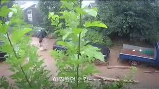 2020년 안성 수해상황 실시간 CCTV