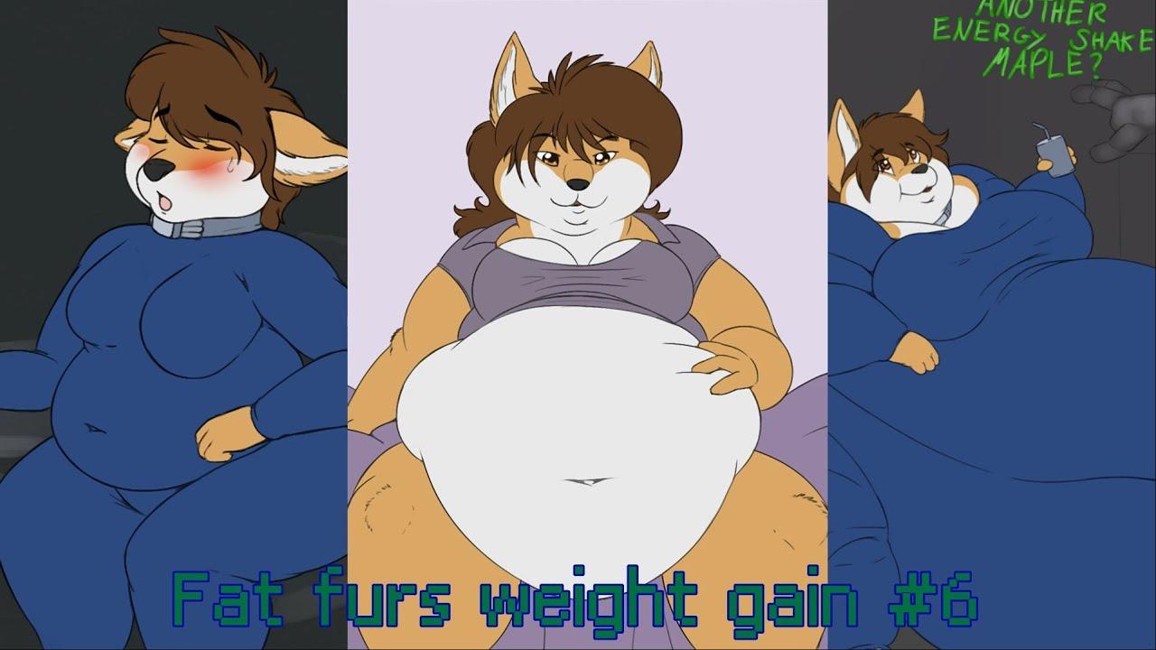 Fat Fur Weight: Fat Furs Weight Gain #6