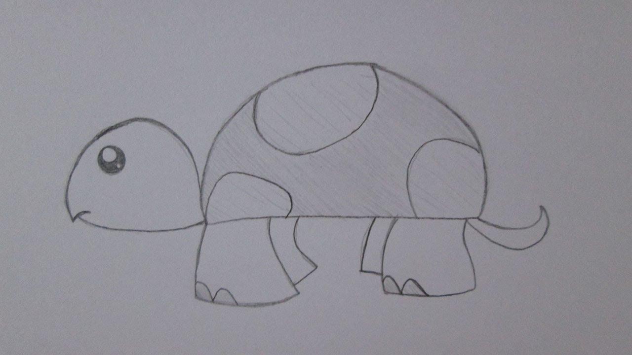 Cómo dibujar una tortuga - YouTube