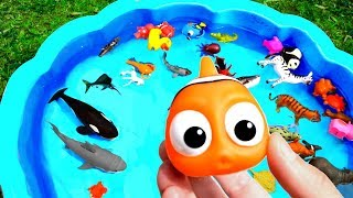 Learn Sea Animal Names and Zoo Animals Names Education Video Toys For Kids