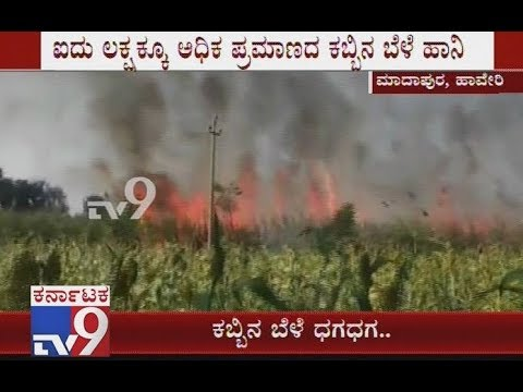 Fire Broke Out From Electric Transformer As Sugarcane Crops Gets Destroyed At Haveri