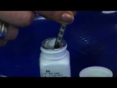 How To Give My Pet Liquid Medication.wmv