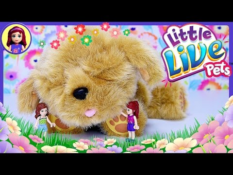 Snuggles My Dream Puppy Little Live Pets Review Silly Play Lego Friends Girls Newest Pet - Kids Toys