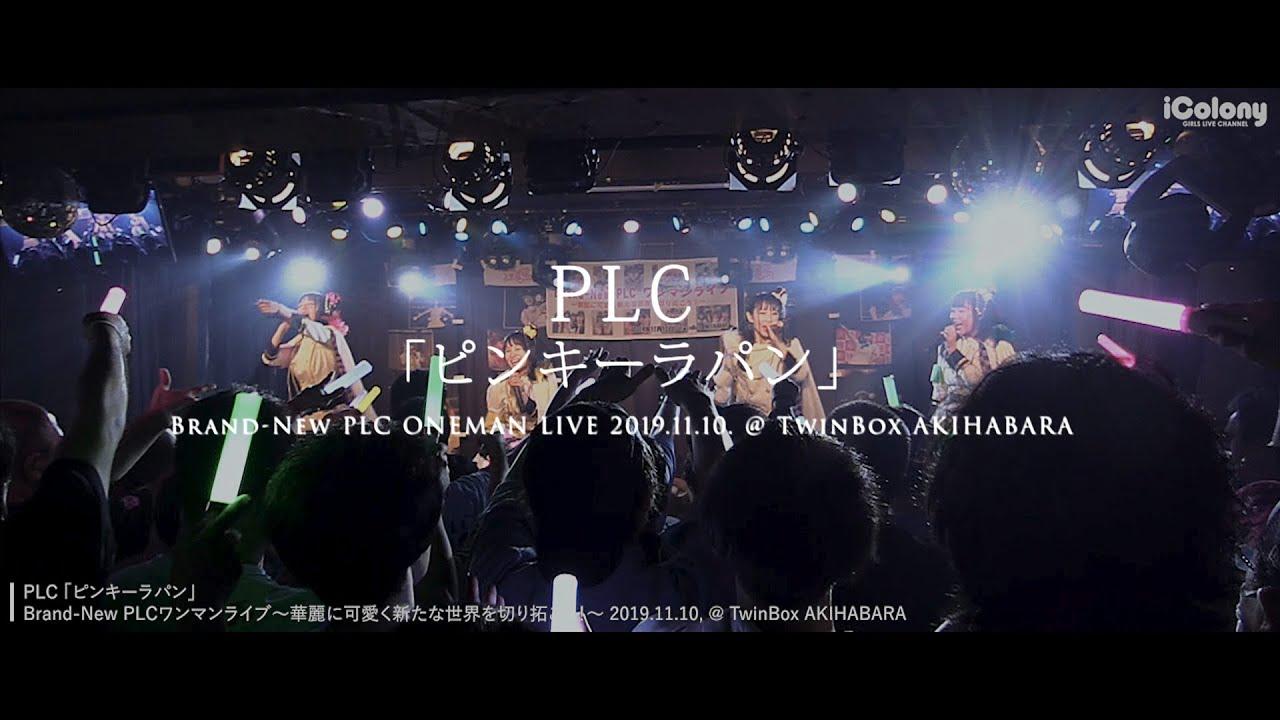 PLC – ピンキーラパン (Pinky Lapin) [live]