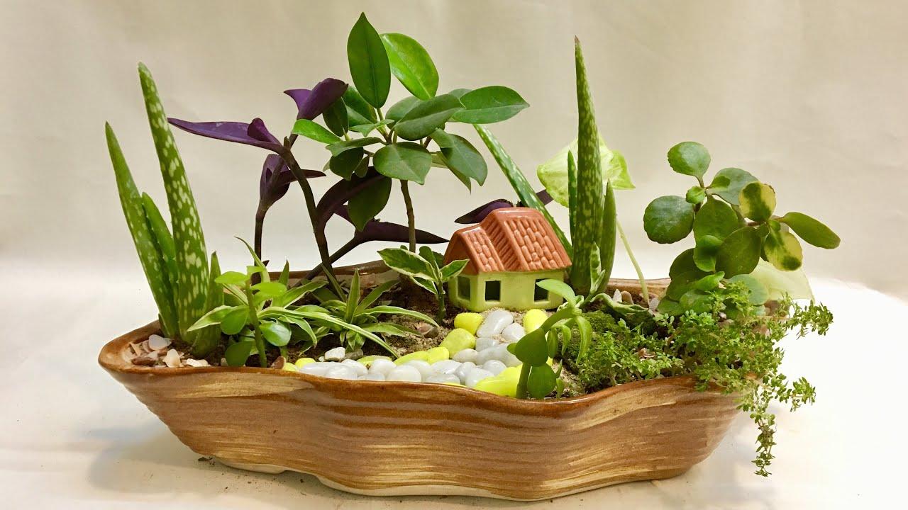 Cute Fairy Garden, DIY Fun Gardening Ideas with Indoor Plants for ...
