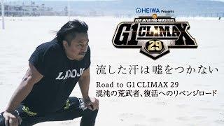【Road to G1CLIMAX29】混沌の荒武者、復活へのリベンジロード